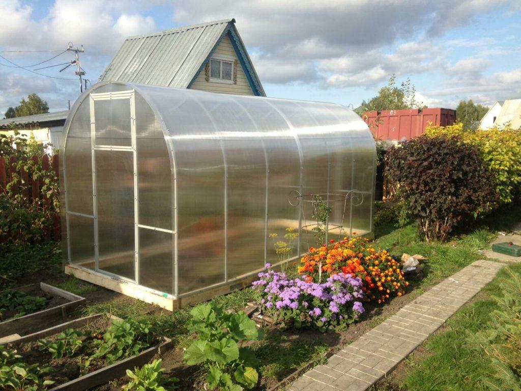 """Теплица """"Урожайная"""", размеры ширина 2 или 2,5 метра, длина 4.6 или 8 м"""